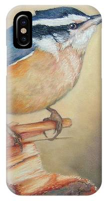 Red-breasted Nuthatch Bird IPhone Case