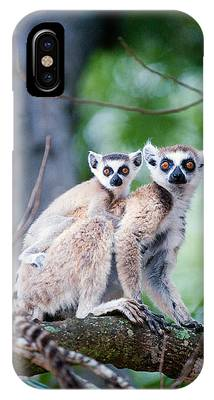 Ring Tailed Lemurs Phone Cases