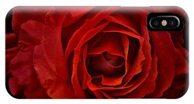 IPhone Case featuring the photograph Rose In Red by Patricia Strand