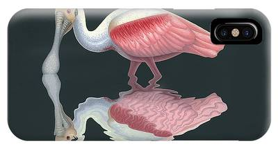 Spoonbill IPhone Cases