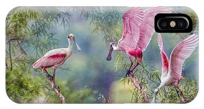 Spoonbill Phone Cases