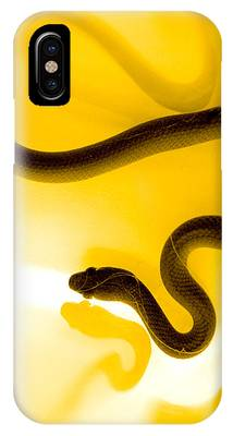 Reptile IPhone Cases