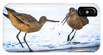 Sanderlings Playing At The Beach IPhone Case