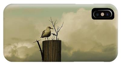 IPhone Case featuring the photograph Seagull Lookout by Patricia Strand