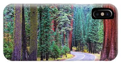 Sequoia Hwy IPhone Case