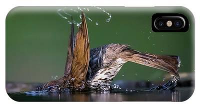 Bird Bath Phone Cases