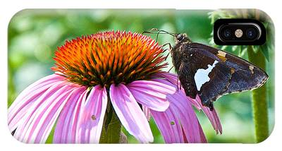 Silver-spotted Skipper And Echinachea IPhone Case