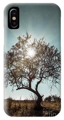 Sunlight Phone Cases