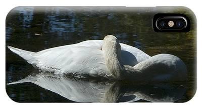 Sleeping Swan IPhone Case