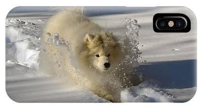 Snowplow IPhone Case