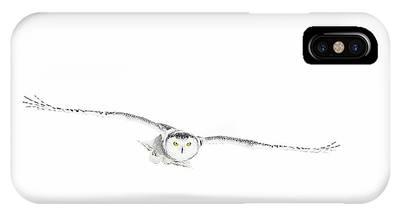 Snowy Owl Phone Cases