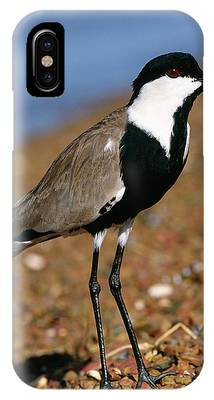 Lapwing Phone Cases