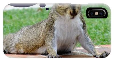Squirrely Push Ups IPhone Case