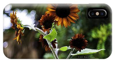 IPhone Case featuring the photograph Sunflower V. 'velvet Queen' by Richard J Thompson