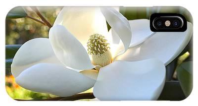 Sunlit Southern Magnolia IPhone Case