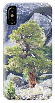 Tenaya Juniper Pine IPhone Case