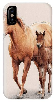 Palomino Foal Phone Cases