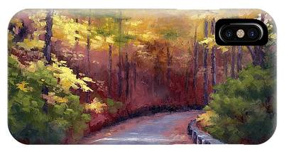 Warner Park In Nashville Tennessee Paintings iPhone Cases