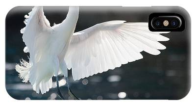 The White Winged Wonder IPhone Case