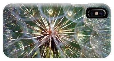 Salsify Phone Cases