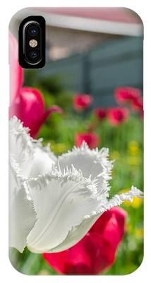Tulip Garden IPhone Case by Michael Goyberg