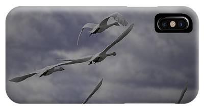 Tundra Swan Phone Cases