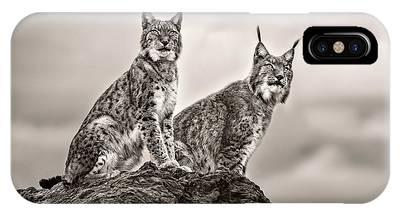 Lynx Phone Cases