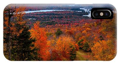 View From Mccauley Mountain II IPhone Case