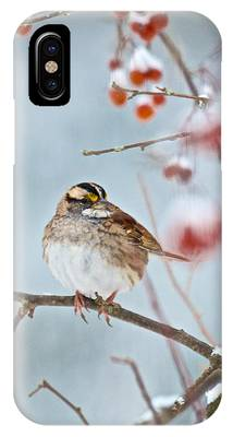 White-throated Sparrow Braving The Snow IPhone Case