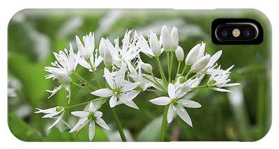 Wild Garlic (allium Ursinum) Phone Case by Chris Dawe/science Photo Library