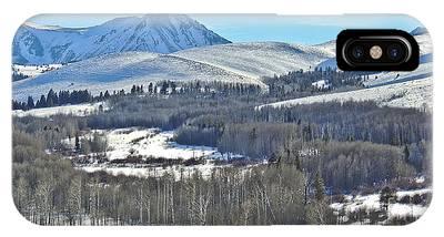 Winter Evening Aspen IPhone Case