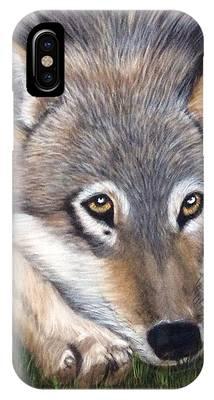 Wolf IPhone Case by Patti Ferron
