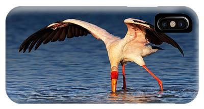 Stork Phone Cases