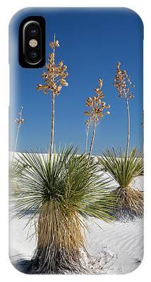 Yucca Elata Phone Cases
