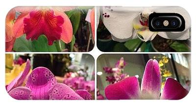 Orchids Phone Cases