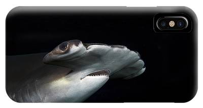 Hammer Head Shark Phone Cases