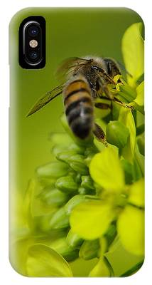 IPhone Case featuring the photograph Bee On A Yellow Background by Michael Goyberg