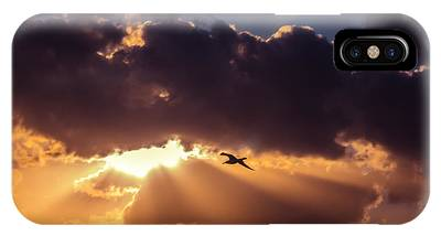 IPhone Case featuring the photograph Bird In Sunrise Rays by Michael Goyberg