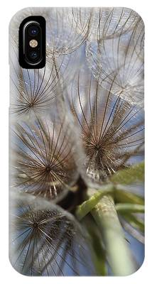 Bug's Eye View IPhone Case