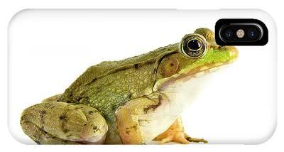 Bullfrogs Phone Cases