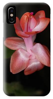 Catcus Flower IPhone Case
