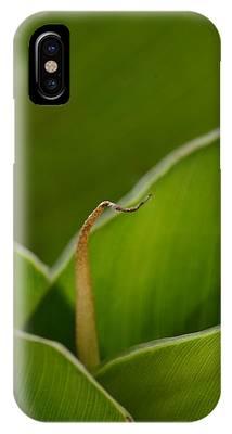 Curled IPhone Case