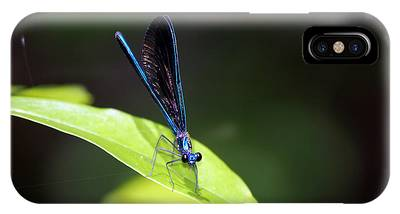 Dragonfly Fly IPhone Case