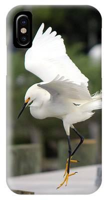 Egret Ballet IPhone Case