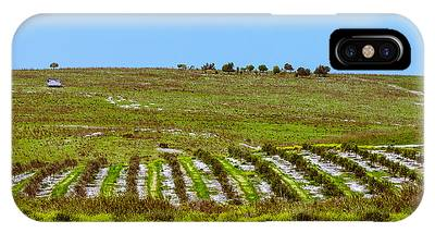 IPhone Case featuring the photograph Green Hills by Michael Goyberg