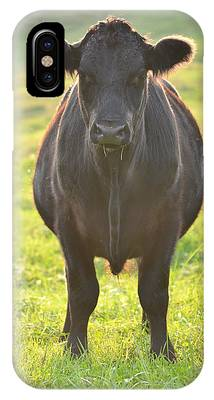 Here's The Beef IPhone Case