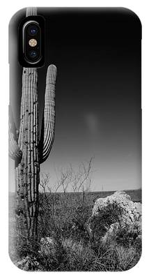 Cacti Photographs iPhone Cases
