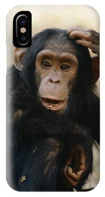 Gombe National Park Phone Cases