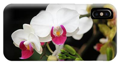 Orchid Buds IPhone Case