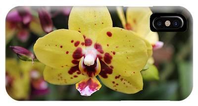 Orchid Tie Dye IPhone Case